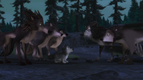 Alpha and Omega 2 A Howl-iday Adventure (253)