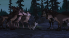 Alpha and Omega 2 A Howl-iday Adventure (259)