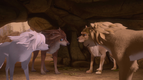 Alpha and Omega 2 A Howl-iday Adventure (213)
