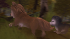 Alpha and Omega 2 A Howl-iday Adventure (113)