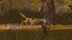 Alpha and Omega 2 A Howl-iday Adventure (546)