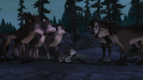 Alpha and Omega 2 A Howl-iday Adventure (258)