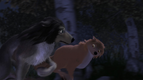 Alpha and Omega 2 A Howl-iday Adventure (269)