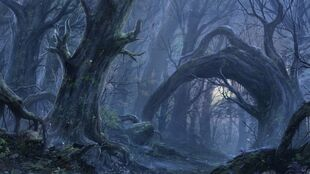 Fantasy-forest-wallpaper-high-resolution-1920x1080