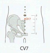 Yinjiao CV7 RN7 (acucn.com)