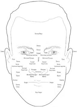 Диагноз по лицу в китайской медицине