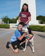 Caminata por los perros y animales Maracaibo 2012 (46)