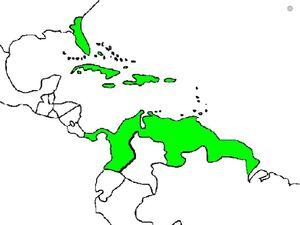 Caribbean empire.jpg