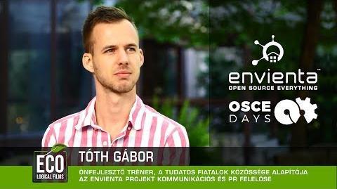 Tóth Gábor - Életképes alternatívák keresése