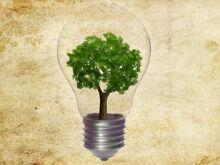 Electricity 3.jpg