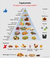 Fogyás piramis