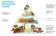 Egészséges evés