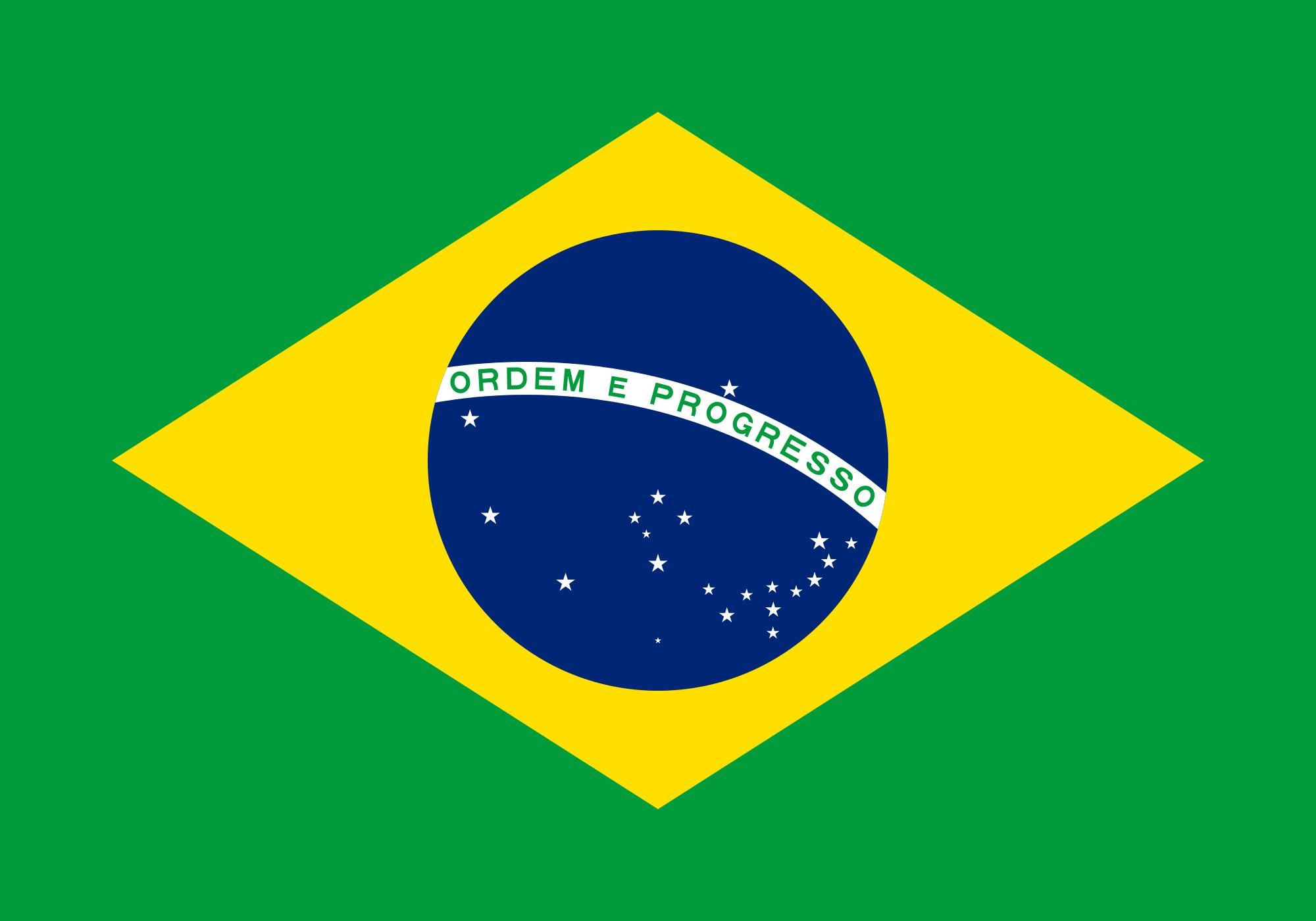 Campaña Sudamericana (Gran Imperio Alemán)