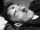 """Ein """"unsportlicher"""" Weltretter: Das Hitler-Attentat des Noel Mason-MacFarlane"""