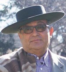 Gonzalo Tejos Pérez (Chile No Socialista)