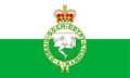 Possible Flag Anglesey3
