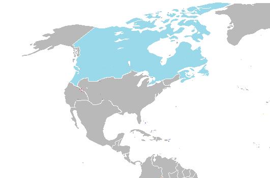 Canadá (ASXX)