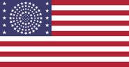 American flag 110 stars