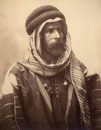Palmyrasheikh
