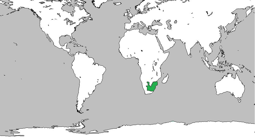 Zambia (Age of Asia)