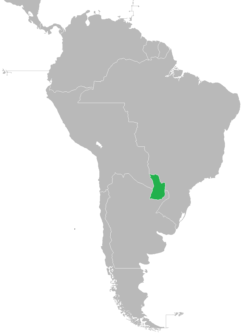 Paraguay (MNI)