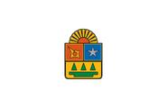 Bandera del estado de quintana roo version oficial
