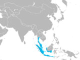 Majapahit Empire (A Different History)
