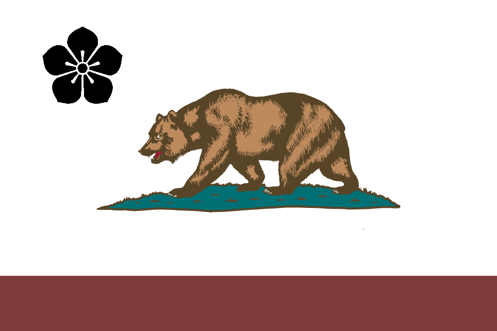 Flag of Kasodani (PM II).png