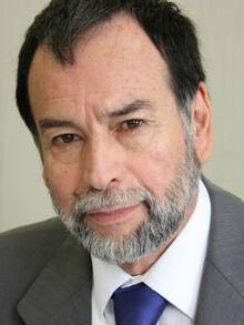 Nelson Ávila (Chile No Socialista)