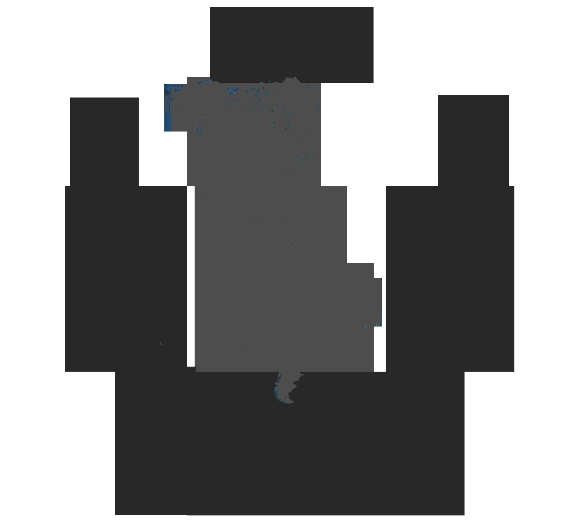 Copa Libertadores de América (Gran Imperio Alemán)