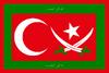 Flag of islamic Turkey.png