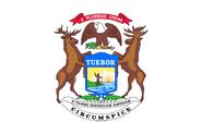 685px-Flag of Michigan Governor svg