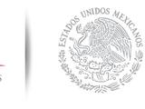 Secretaría de Comunicaciones y Transportes (MPA)