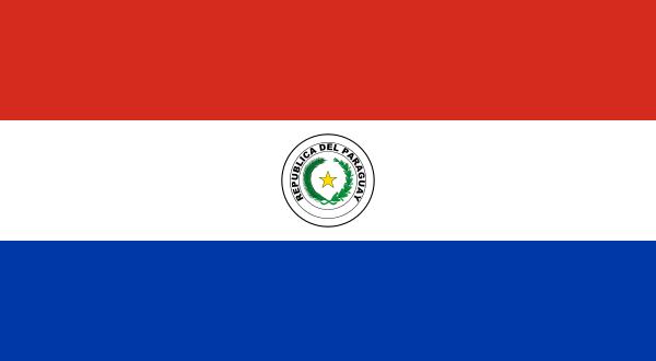 Парагвайская война