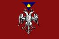 Flag of Ersekë