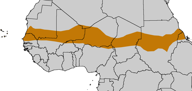 800px-Sahel Map-Africa rough.png