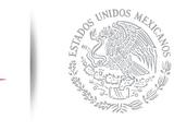 Secretaría de Gobernación (MPA)