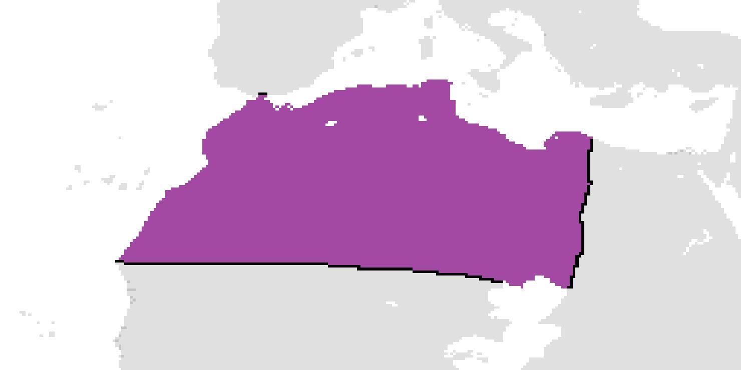 Al-Maghreb (Yellowstone: 1936)