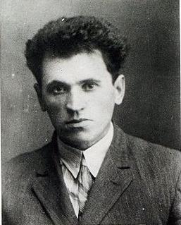 Михай Юлиу Панки (МиОВ)