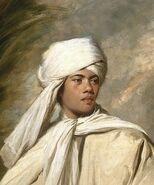 Joshua Reynolds - Portrait of Omai (Cropped)