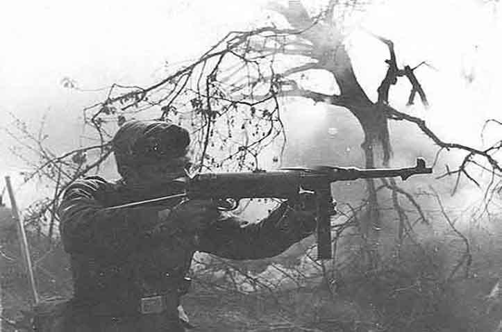 1946 Poti Raid (Hitler's World)