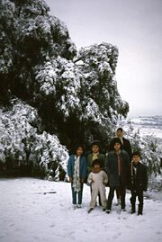 Atizapan 1967 nieve.jpg