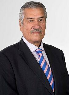 Fernando Meza (Chile No Socialista)