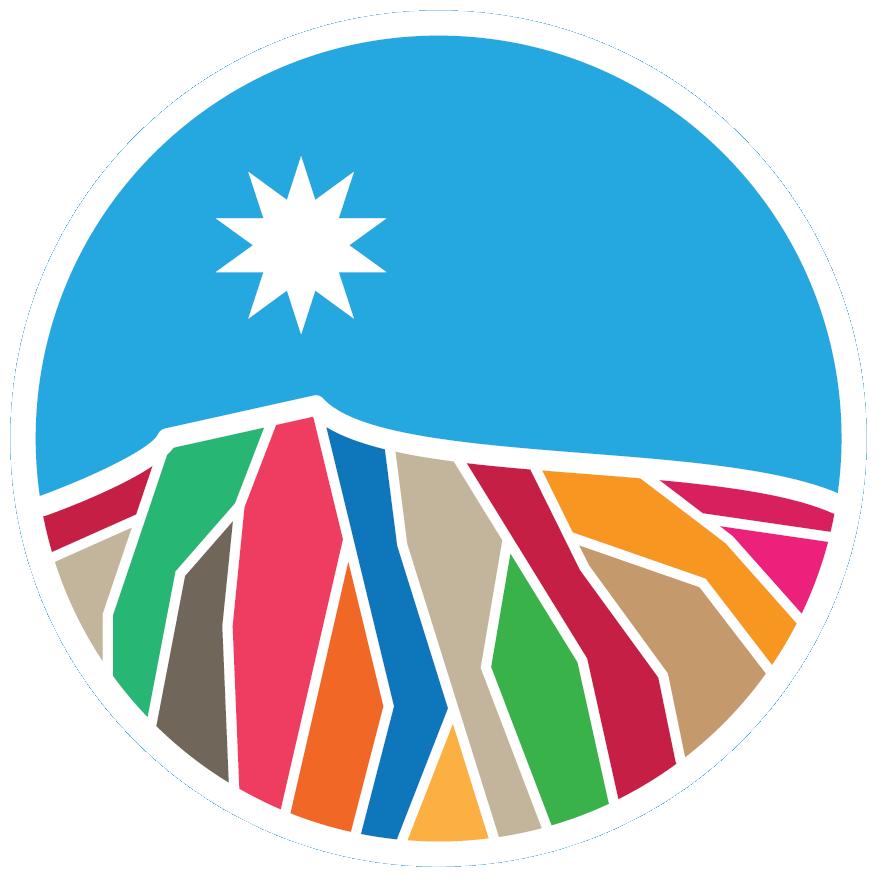 Elecciones Municipales de Chile de 2021 (Chile No Socialista)