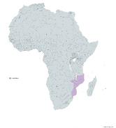 MOZAMBIQUE MAPA 1993 LGMS
