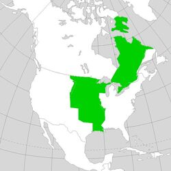 Quebec-Louisiana (Napoleon's America)
