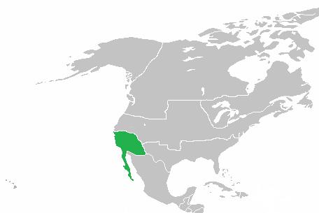 California (Quebec Independence)