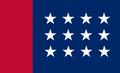 Bandera de la CNS.png