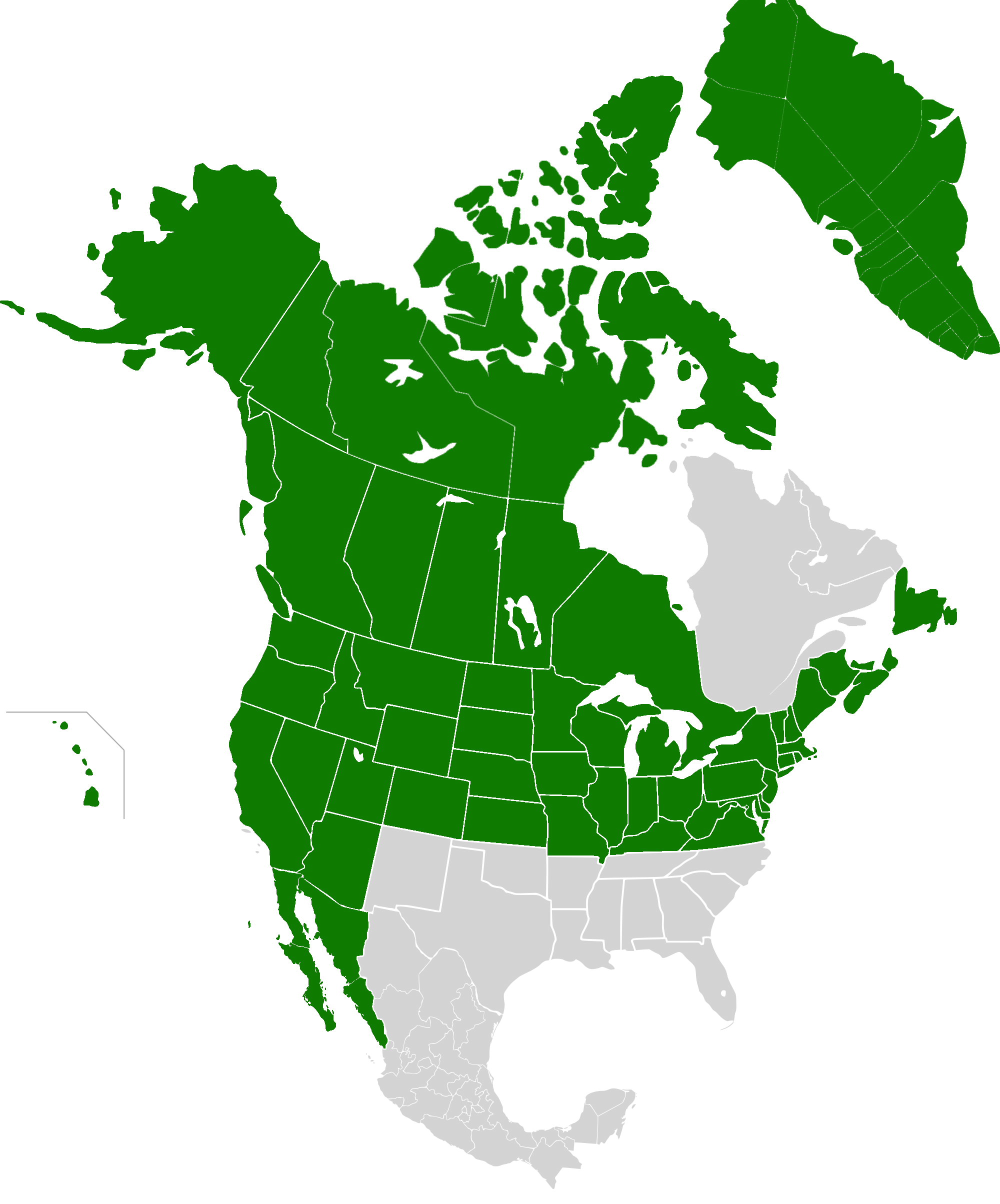 AMP Map of the United States of America VIV.png