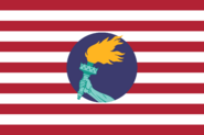 US flag in style of Zaire